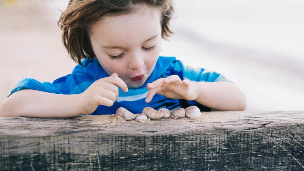 Ребенок считает ракушки